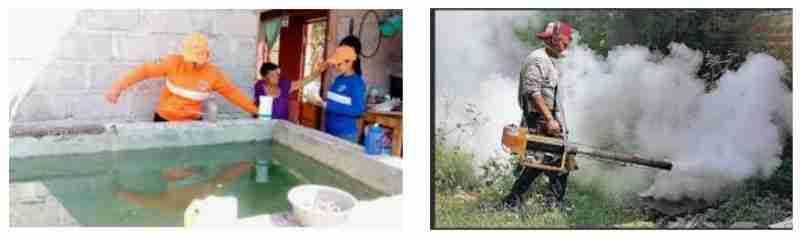 Eliminación de criaderos de zancudos para prevenir el dengue